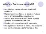 what s a performance audit