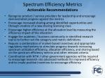 spectrum efficiency metrics actionable recommendations