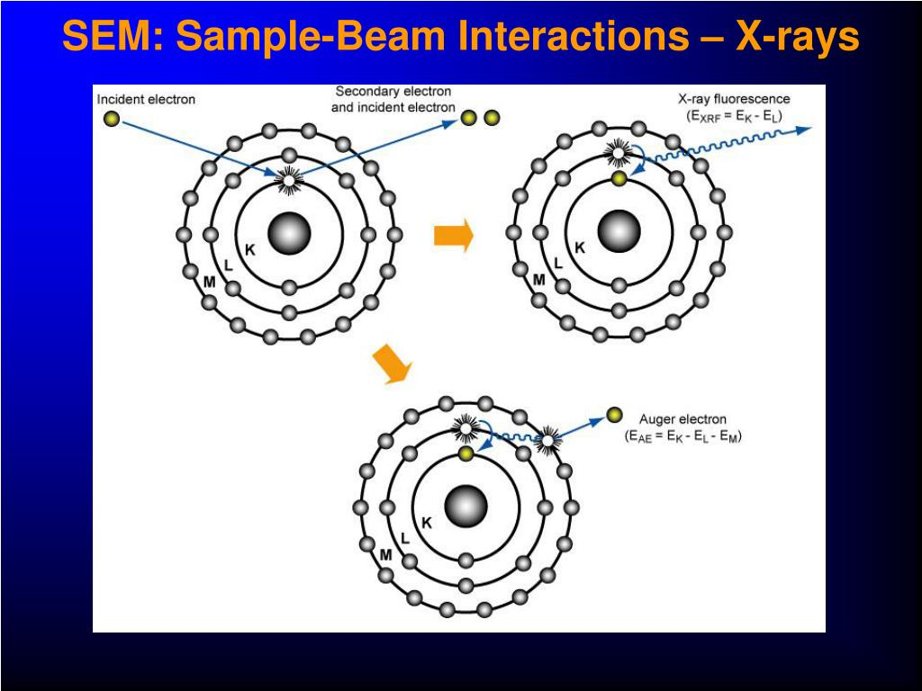 SEM: Sample-Beam Interactions – X-rays