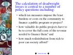 the calculation of deadweight losses is central to a number of policy questions including