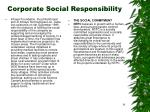 corporate social responsibility34