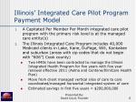 illinois integrated care pilot program payment model