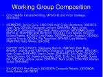 working group composition