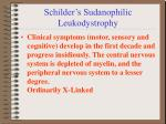 schilder s sudanophilic leukodystrophy