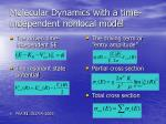 molecular dynamics with a time independent nonlocal model