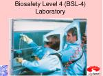 biosafety level 4 bsl 4 laboratory