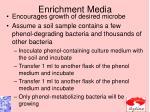 enrichment media