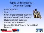 types of businesses other than large
