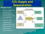 co 2 supply and sequestration