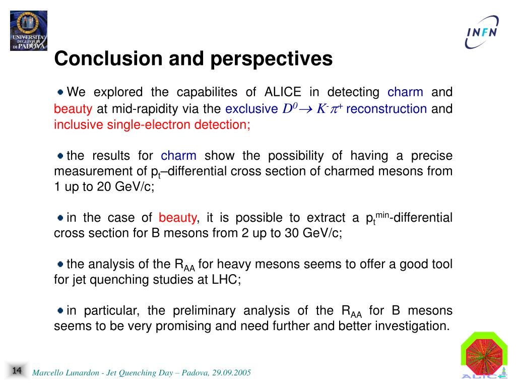 Conclusion and perspectives