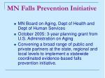 mn falls prevention initiative