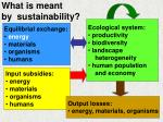 what is meant by sustainability