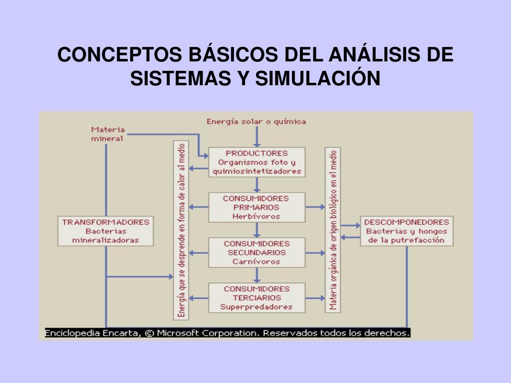 conceptos b sicos del an lisis de sistemas y simulaci n l.