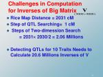 challenges in computation for inverses of big matrix