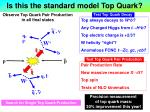 is this the standard model top quark