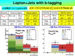 lepton jets with b tagging10