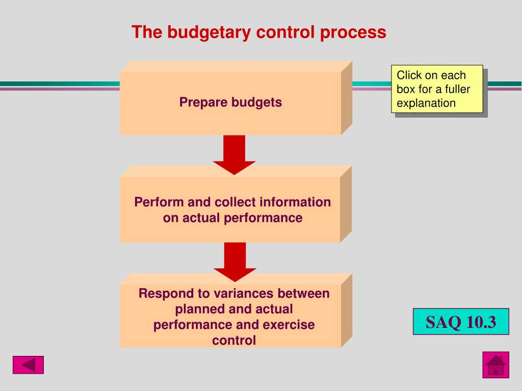 The budgetary control process