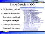 introduction go