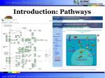 introduction pathways