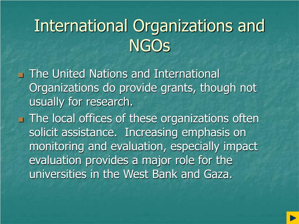 International Organizations and NGOs