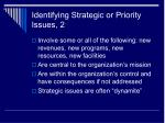 identifying strategic or priority issues 2