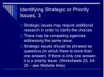 identifying strategic or priority issues 3