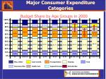 major consumer expenditure categories