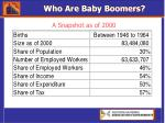 who are baby boomers