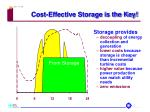 cost effective storage is the key