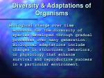 diversity adaptations of organisms