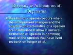 diversity adaptations of organisms13