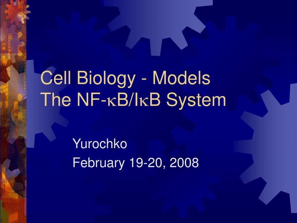 cell biology models the nf k b i k b system l.