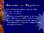 mechanism i k b regulation