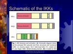 schematic of the ikks