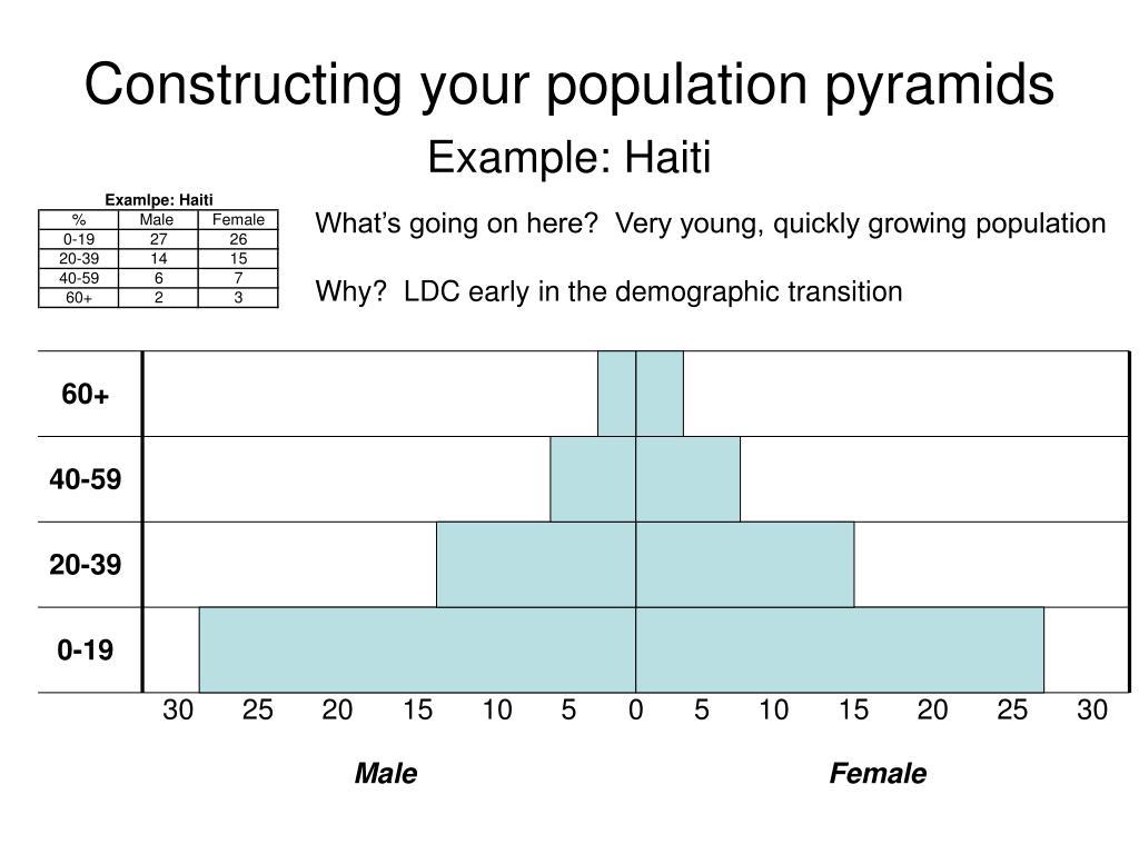 constructing your population pyramids l.