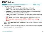 igrp metrics6