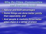 why do cities communities and regions exist