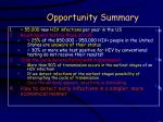 opportunity summary