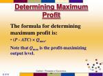 determining maximum profit