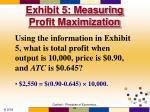 exhibit 5 measuring profit maximization47