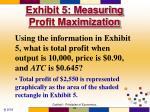 exhibit 5 measuring profit maximization48