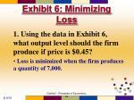 exhibit 6 minimizing loss