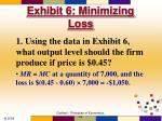 exhibit 6 minimizing loss62