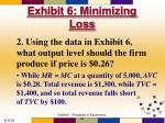 exhibit 6 minimizing loss64