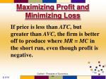 maximizing profit and minimizing loss50
