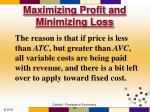 maximizing profit and minimizing loss51