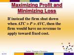 maximizing profit and minimizing loss52