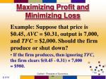 maximizing profit and minimizing loss53