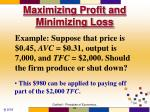 maximizing profit and minimizing loss54