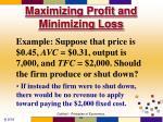 maximizing profit and minimizing loss55